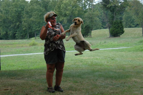 photo-olive-jump